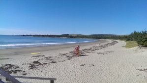 Lone Lifeguard on Rissers Beach